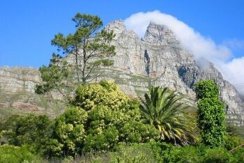 Table Mountain, Camps Bay, Cape Town